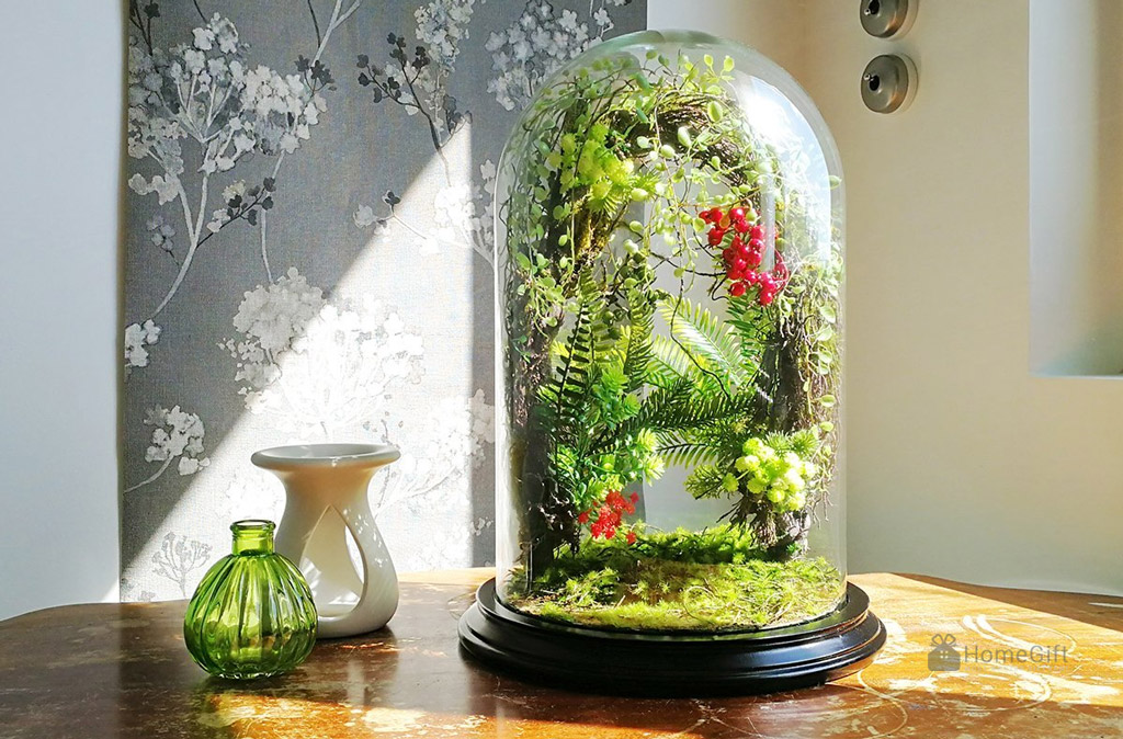 Forest Terrarium