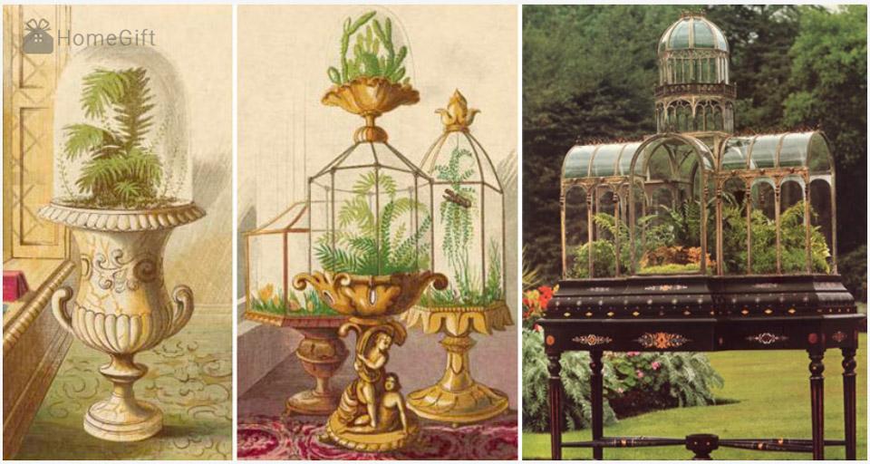 Một số loại tiểu cảnh Terrariums Wardian Case phổ biến thời đầu
