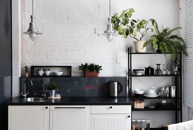 Những loại cây thích hợp trồng trong nhà bếp