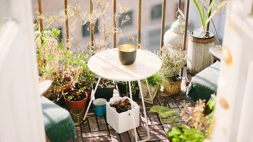 cây xanh trên ban công cũng khiến không gian sống của bạn thêm phần thoáng đãng