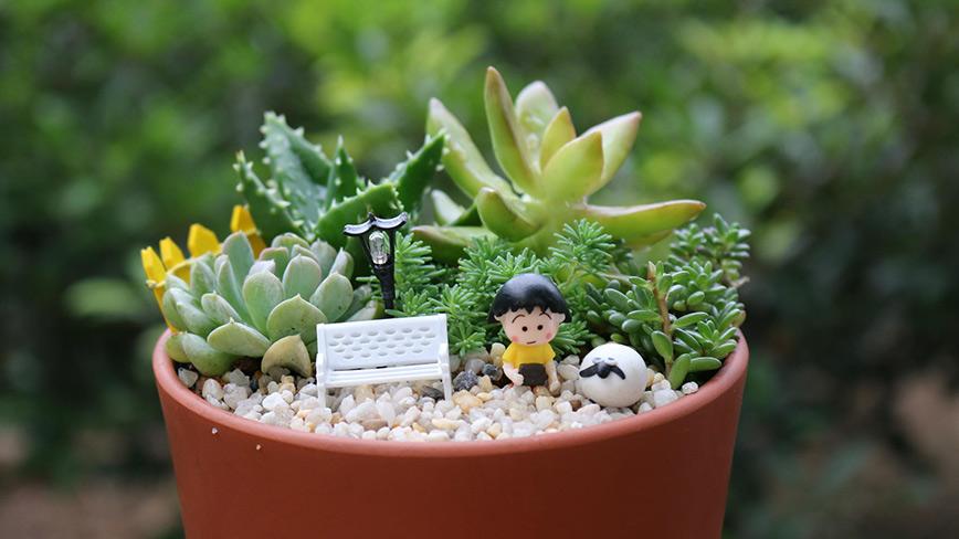 Chậu cây xanh mini là một trang những quà tặng décor dễ thường và ý nghĩa